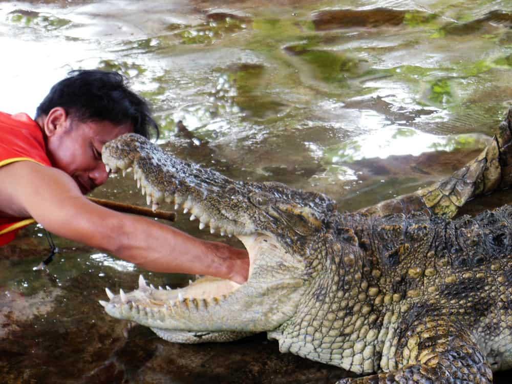 Thailand (16)