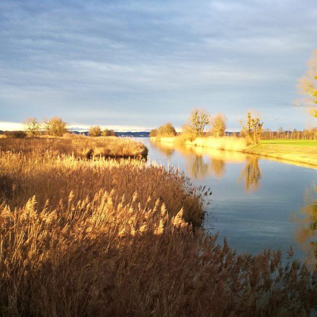 Hard am Bodensee – so schön ist es im Ländle