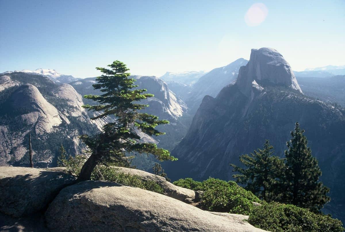 Klettersteig Yosemite : Diese nationalparks in kalifornien solltet ihr unbedingt gesehen