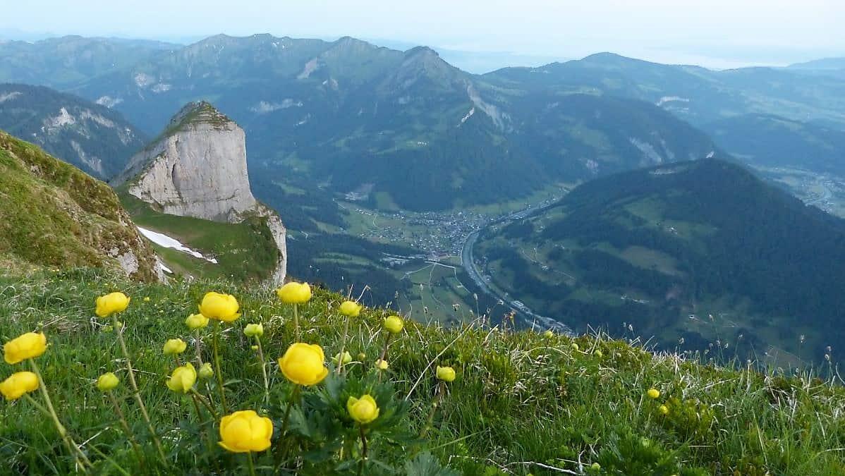 Highlights im Bregenzerwald - meine Tipps!